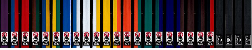 Belts Judo/Hapkido